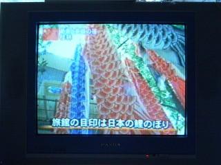 TV-Koinobori.jpg