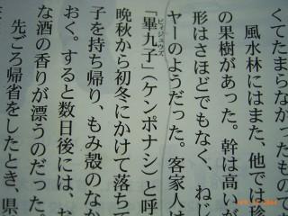 tori-JinminC-book.jpg
