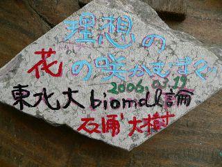 0322-Touhoku-isi-.jpg