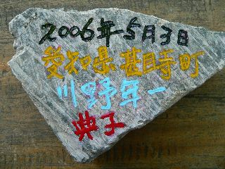0503-Aichi-isi-.jpg