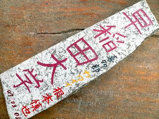 070302-Waseda-isi-.jpg