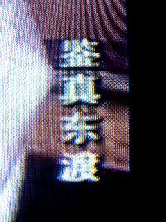 070406-ganjin-2.jpg
