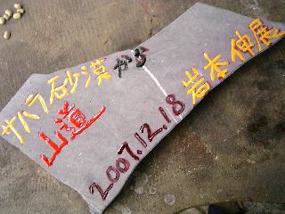 071218-Iwamoto-isiita-.jpg