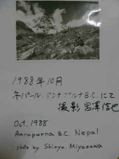 080507-Photo-Miyazawa-.jpg