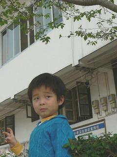 090324-Sakura-22Kita-.jpg