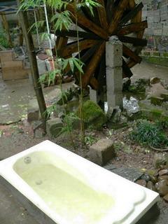 090517-rotenHuro.jpg
