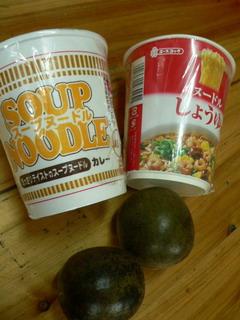 090528-Japanese-food-.jpg