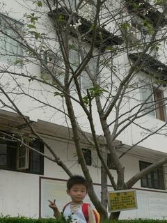 091009-Sakura-2-.jpg