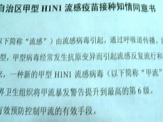 091213-H1N1-bunsyo1-.jpg