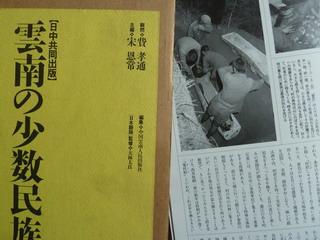 101130-Book-UnnanSyousuuminzoku-.jpg
