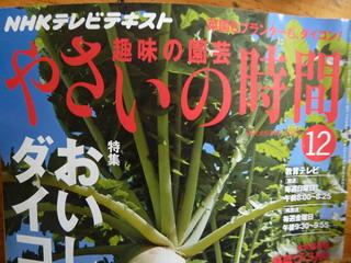 110101-Yasai-book-.jpg