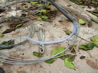 110302-pipe-pipe-inn-.jpg