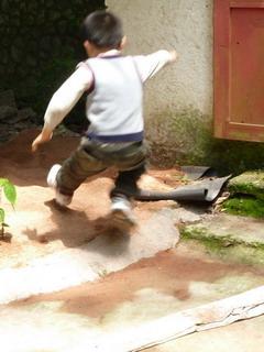 110423-hasirihabatobi-.jpg