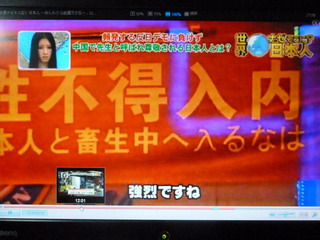 121102-TV-13-J&Dog-hairuna-.jpg