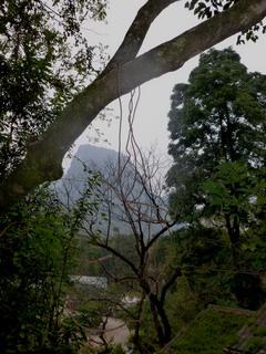 121209-kieta-Hayotouri-Sityu-.jpg
