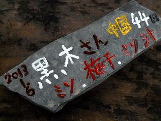 130113-Kuroki-isiita-.jpg