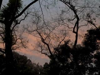 130204-yuyake-East-.jpg