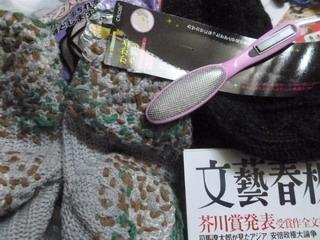 130311-keitokutusita-kakatoYasuri-.jpg