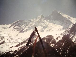 140612-Himalaya-Koiobori-.jpg