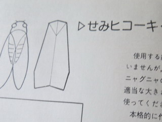 140927-semiHikouki-book-.jpg