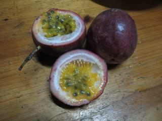 141028-fruts-hyakukaori-.jpg