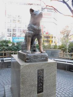 150116-Sibuya-tyukenhatikou-.jpg