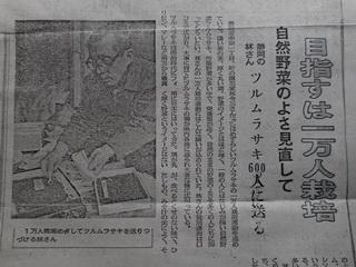 151118-titi-sinbun-s50-kiji-.jpg
