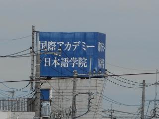 hayashi 452.jpg