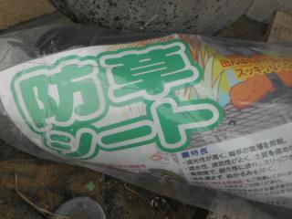 DSCN4746[1].JPG