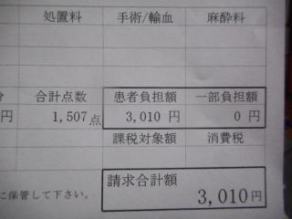 DSCN6328.JPG