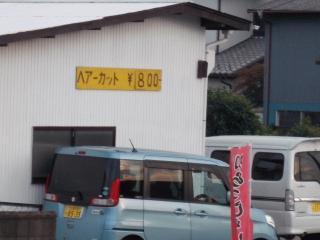 DSCN0917.JPG