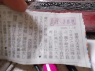 DSCN7511.JPG